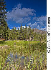 Water Basin in Yosemite National Park Area in California, United States. HDR Image.