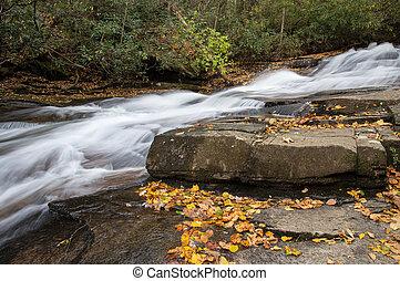 North Carolina Stream - Water cascades in a North Carolina...