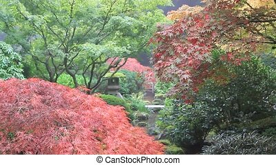 Water Creek in Japanese Garden Portland Oregon in Colorful...