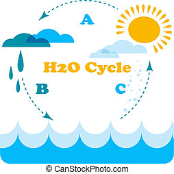 water cycle infographics