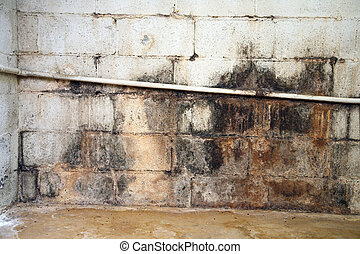 Severe water damage on a cinderblock wall in a neglected basement. It's covered in dirt, cracks, mold and mildew.