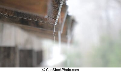 Water dripping from roof