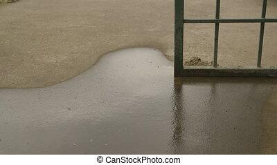 Water Dripping onto Concrete Ground - Handheld, medium close...