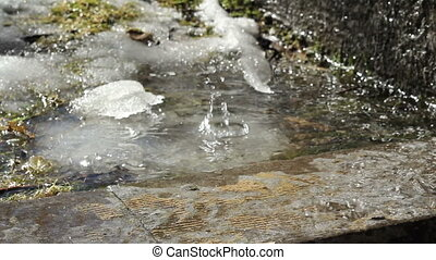 water drop of snow melting at spring footage closeup real...