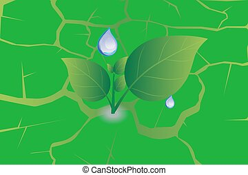 water drop on green leaf ground texture