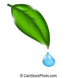 water drop with green leaves. Vector illustration