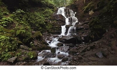 Water falls over rocks through the dense fern undergrowth of...