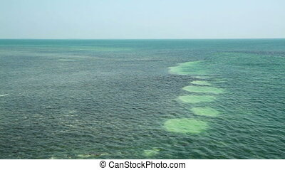 Water Florida Keys  - Open Water View Florida Keys