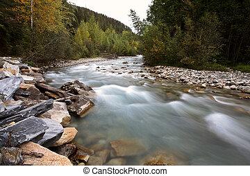 Water flow along Small Creek in beautiful British Columbia