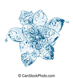 water flower splashes isolated on white