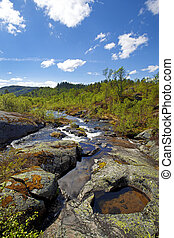 Water flowing down the river in the Norwegian mountains