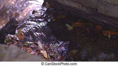 Water flowing in a little stream