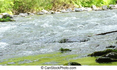 Water flowing in river  - Water flowing in river