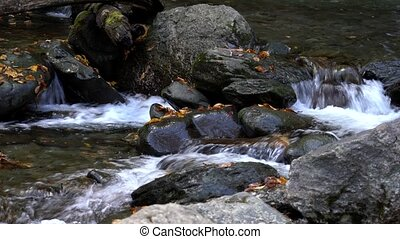 Water Flowing Over Rocks With Fallen Leaves In Stream