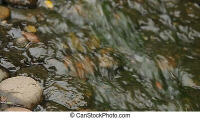 Water flowing over the stones. Close up video