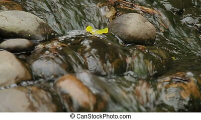 Water flowing over the stones. Close up video with yellow...