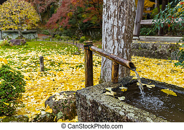 Water fountain in Japanese temple