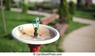 Water fountain in the park - Water fountain in an empty park