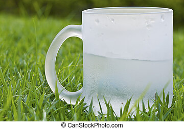 Water glass on grass closeup background