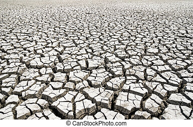 water., global, agrietado, warming., arcilla, sin