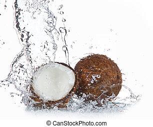 water, het bespaten, gebarsten, cocosnoot