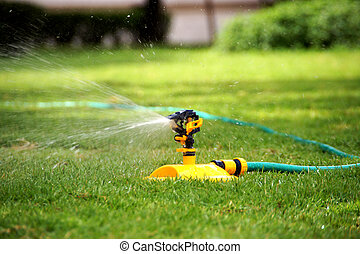 Water hose.