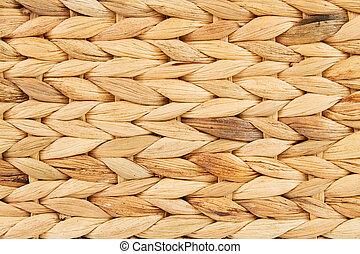 Water hyacinth - Closeup of a plaited water hyacinth