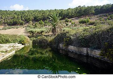Ein Ivka - Water in Ein Ivka spring in Israel...