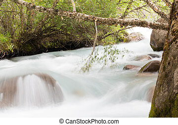 water in the mountain river