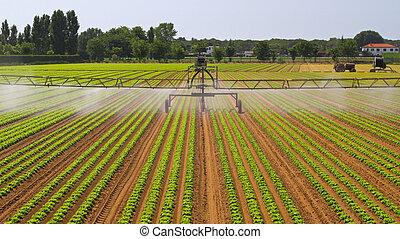 Water Irrigation Sprinkler