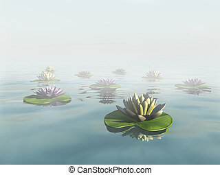 Water lilies in a dreamlike foggy lake.