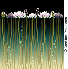 Water lilly and bubbles - Illustration of water lilly and...