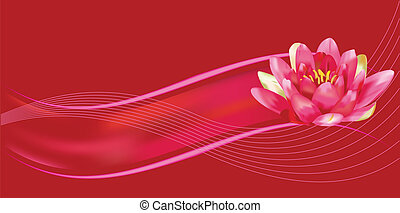 Water lily background - Water lily vector on red and fuchsia...
