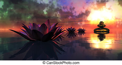 water lily floating in the water and sunset