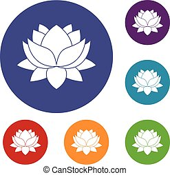 Water Lily Flower Icons Set
