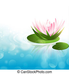 Water Lily - Pink Water Lily at Green Leaf Over Blue Water...