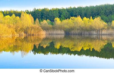 Water mirror of lake. Rural landscape