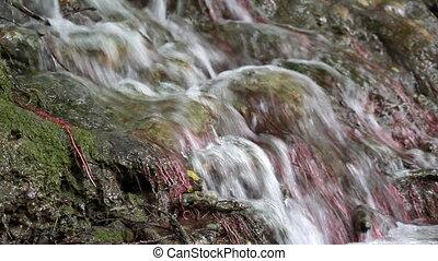 water nature scene