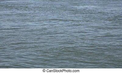 water, of, meer, zee, oceaan