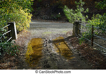 Water on the bridge