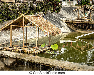 water, op, bungalow