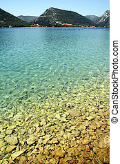 Water overlooking urchins and rocks