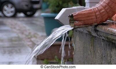 Water Pipe During the Rain. Tin Water Run Drain Pipe and...