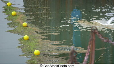 Water Pollution, Wastewater In A Harbor - Native Version -...
