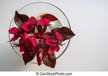 water., pomme, pendula, arbre fleurissant, mai, rouges, season., redevance, pourpre, fleur, printemps, arbres, verre, variété, fleurs, malus, avril