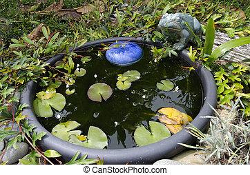 Water pond in the garden