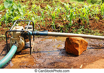 Water pump in the field during dry season - Water pump in a...