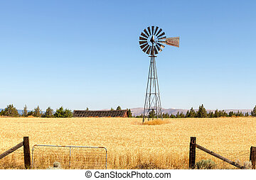 Water Pump Windmill at Wheat Farm in Rural Oregon