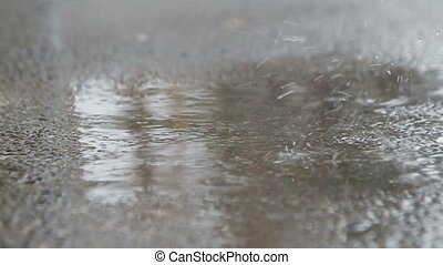 Water Rain on asphalt  surface