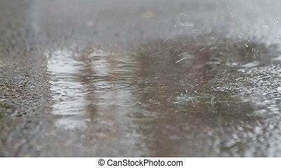 Water Rain on asphalt  surface